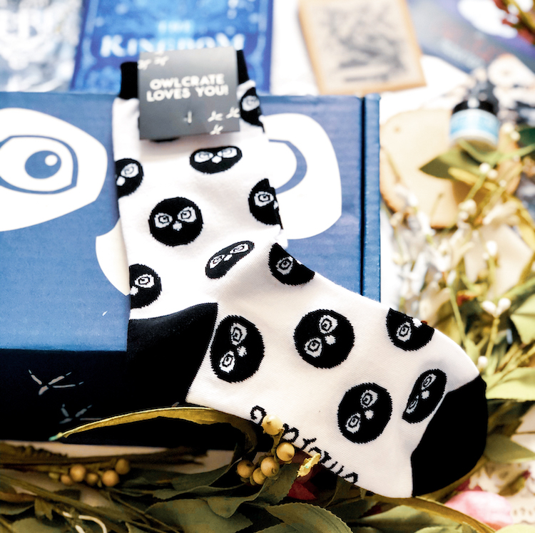 OwlCrate March 2020 socks