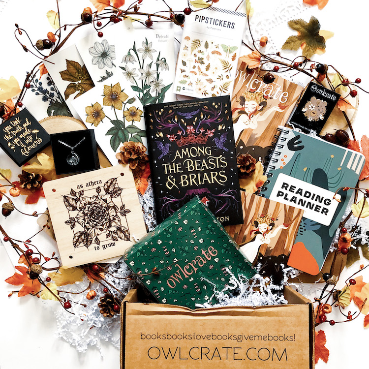 OwlCrate November 2020 Unboxing
